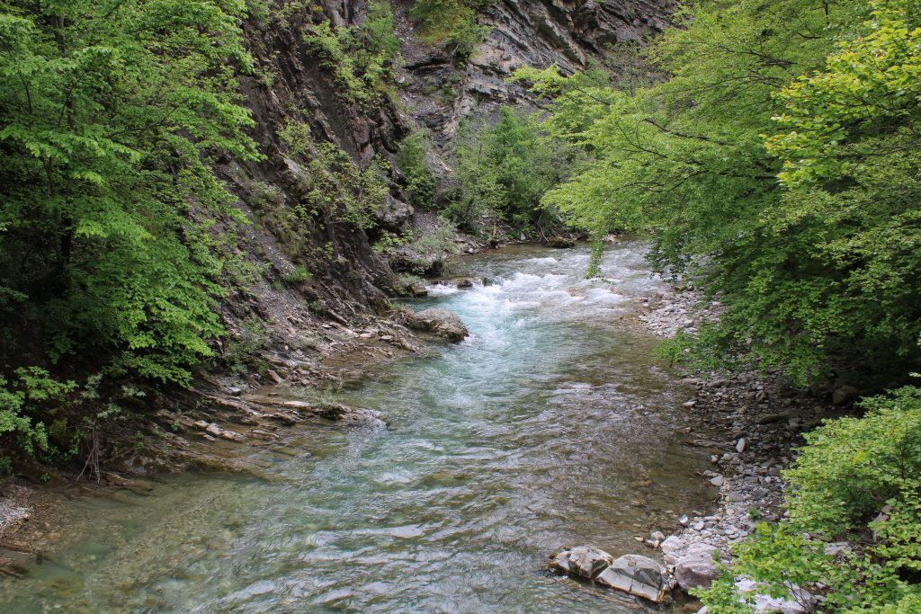 Reka Suteska